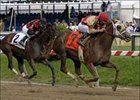 Nine Fillies to Compete in Azalea Breeders' Cup