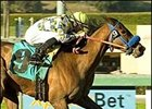Hello Lucky wins the Las Flores Handicap Saturday at Santa Anita.