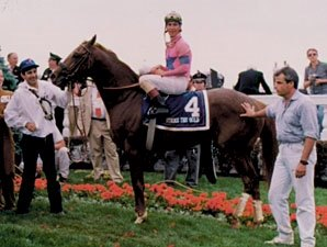 KY Derby Winner Strike the Gold Dead at 23