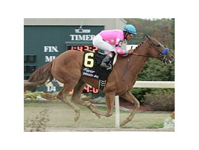 Indiana Oaks winner Always a Princess headlines the field in the Chilukki Stakes.