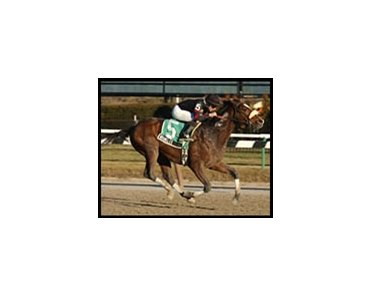 Wrangler, winning the Paumonok Handicap at Aqueduct, won the General George Stakes at Laurel Monday.