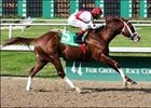 Master Command, with John Velazquez up, wins the Mineshaft Handicap, Saturday at Fair Grounds.