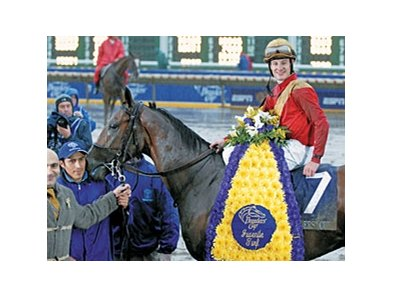 "Nownownow, who won the 2007 BC Juvenile Turf, sold for $130,000 to top the Nov. 17 session of the Keeneland breeding stock sale.<br><a target=""blank"" href=""http://www.bloodhorse.com/horse-racing/photo-store?ref=http%3A%2F%2Fpictopia.com%2Fperl%2Fgal%3Fprovider_id%3D368%26ptp_photo_id%3D2627213%26ref%3Dstory"">Order This Photo</a>"