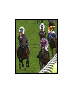 High Chaparal, right, pulls away from Hawk Wing in the Epsom Derby. At left behind Hawk Wing is the American horse Coshocton, who fell before the finish and had to be euthanized.