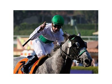 Julien Leparoux won 2 races on Breeders' Cup Friday, including the Filly & Mare Sprint with Informed Decision.