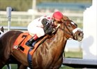 High Fly, Noble Causeaway Turn in Easy Works