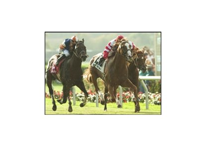 Sweet Return (center) held on to win the 2005 Eddie Read Handicap.
