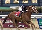 "Cowtown Cat, ridden by Ramon Dominguez, wins the Gotham Saturday  Aqueduct.<br><a target=""blank"" href=""http://www.bloodhorse.com/horse-racing/photo-store?ref=http%3A%2F%2Fpictopia.com%2Fperl%2Fgal%3Fprovider_id%3D368%26ptp_photo_id%3D866240%26ref%3Dstory"">Order This Photo</a>"