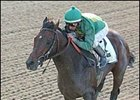 Mineshaft cruises to victory in the Woodward Stakes.