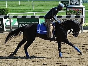 Cozmic One - Belmont Park, May 22, 2015