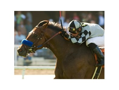 "Oil Man struck graded gold for the first time when he surged past his rivals with a big late kick in the Cinema Handicap on the Hollywood Park turf.<br><a target=""blank"" href=""http://www.bloodhorse.com/horse-racing/photo-store?ref=http%3A%2F%2Fpictopia.com%2Fperl%2Fgal%3Fprovider_id%3D368%26ptp_photo_id%3D8259391%26ref%3Dstory"">Or</a>"