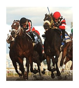 Ravalo (right) outfights Signature Red to win the Kennedy Road.