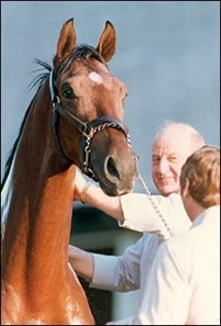 Alysheba and trainer Jack Van Berg