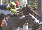 Sterwins defeated favored Rahy's Attorney with a late surge in the Connaught Cup at Woodbine.