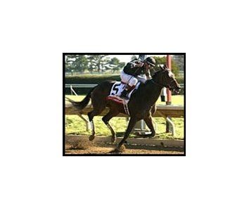 Take Charge Lady, winning the grade I Ashland.