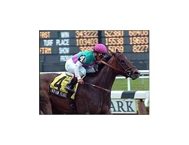 "Indian Flare and Javier Castellano win the Vagrancy Handicap, Sunday at Belmont.<br><a target=""blank"" href=""http://www.bloodhorse.com/horse-racing/photo-store?ref=http%3A%2F%2Fpictopia.com%2Fperl%2Fgal%3Fprovider_id%3D368%26ptp_photo_id%3D1440666%26ref%3Dstory"">Order This Photo</a>"