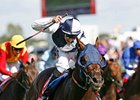 Arctic Cosmos Shines in St. Leger