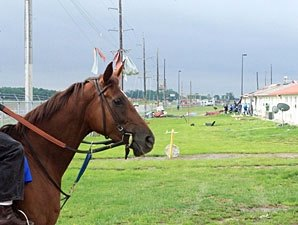 Indiana Downs Sustains Storm Damage