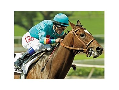 Brother Derek's last win came in the 2006 Santa Anita Derby (gr. I).