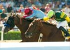 Tough Tiz's Sis beats Hystericalady in the final strides of the Lady's Secret Breeders' Cup.