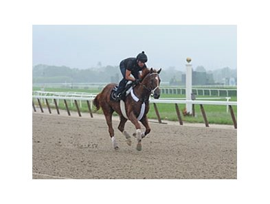 I'll Have Another galloped a mile at Belmont Park May 25.