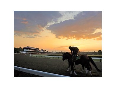 "Training at Saratoga<br><a target=""blank"" href=""http://www.bloodhorse.com/horse-racing/photo-store?ref=http%3A%2F%2Fpictopia.com%2Fperl%2Fgal%3Fprovider_id%3D368%26ptp_photo_id%3D8322702%26ref%3Dstory"">Order This Photo</a>"