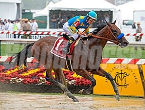 American Pharoah splashes to victory in the Preakness Stakes.
