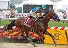 "American Pharoah splashes to victory in the Preakness Stakes.<br><a target=""blank"" href=""http://photos.bloodhorse.com/TripleCrown/2015-Triple-Crown/Preakness-Stakes-140/i-9j8Pd62"">Order This Photo</a>"