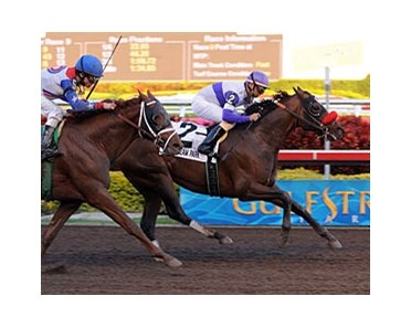 "Donn winner Spring at Last will be in action at Aqueduct in the $300,000 Carter Handicap (gr. I) April 5.<br><a target=""blank"" href=""http://www.bloodhorse.com/horse-racing/photo-store?ref=http%3A%2F%2Fpictopia.com%2Fperl%2Fgal%3Fprovider_id%3D368%26ptp_photo_id%3D3467319%26ref%3Dstory"">Order This Photo</a>"