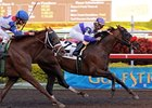 "Spring At Last has been retired from racing and will enter stud in 2009 at WinStar Farm.<br><a target=""blank"" href=""http://www.bloodhorse.com/horse-racing/photo-store?ref=http%3A%2F%2Fpictopia.com%2Fperl%2Fgal%3Fprovider_id%3D368%26ptp_photo_id%3D3467319%26ref%3Dstory"">Order This Photo</a>"