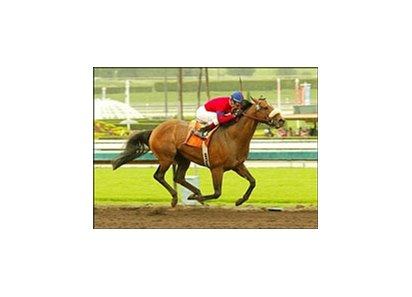 Lundy's Liability, ridden by David Flores, wins the San Antonio Handicap.
