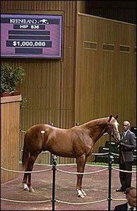 Mr. Greeley colt, sold for $1 million.