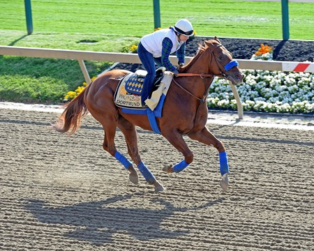 Caption:  Dortmund with Dana Barnes on the track for the first time at Pimlico.
