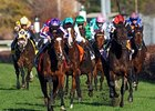 "Joseph O'Brien brings St Nicholas Abbey home in the Breeders' Cup Turf.<br><a target=""blank"" href=""http://www.bloodhorse.com/horse-racing/photo-store?ref=http%3A%2F%2Fpictopia.com%2Fperl%2Fgal%3Fprovider_id%3D368%26ptp_photo_id%3D9729110%26ref%3Dstory"">Or"