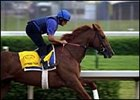 Express Tour, among Godolphin's pre-entered horses.