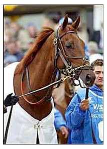 Champion 3-year-old male Funny Cide.