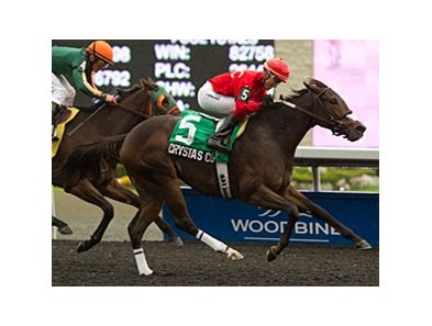 Crysta's Court won the Victoria Queen for Canadian-bred fillies on Sept. 29.