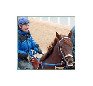 Smarty Jones surveys the track at Oaklawn.