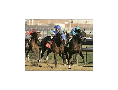 Magna Graduate, right, narrowly defeats Suave, center, to win the Clark Handicap.