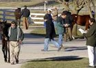 Third Session Shows Strength at Keeneland January Sale