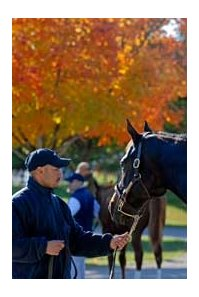 The Keeneland November Breeding Stock Sale begins on Monday, November 5.