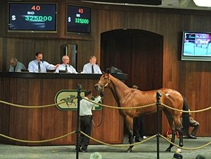 Officer Filly Brings $325,000 at OBS March