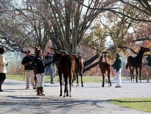 Atrea Tops Session Five at Keeneland Sale