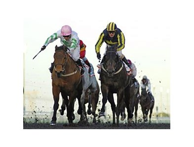 Hitchens (left) defeated Krypton Factor by a head in the Al Shindagha Sprint.