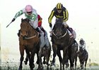 Hitchens (left) overtakes Krypton Factor to win the Al Shindagha Sprint.
