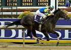 "Street Sense 2006 Breeders' Cup Juvenile (gr. I) romp is one of 10 ""Perfect Trips"" featured in the fan poll."