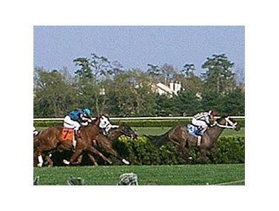 Turf racing attracts full fields at Atlantic City.