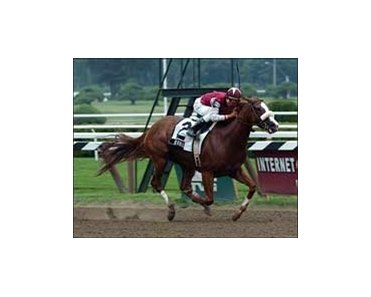 "Burmilla wins Honorable Miss.<br><a target=""blank"" href=""http://www.bloodhorse.com/horse-racing/photo-store?ref=http%3A%2F%2Fpictopia.com%2Fperl%2Fgal%3Fprovider_id%3D368%26ptp_photo_id%3D1896452%26ref%3Dstory"">Order This Photo</a>"