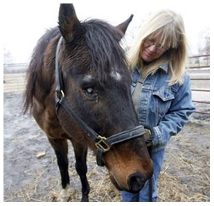 Clever Allemont, a 26-year-old stallion, has been rescued from slaughter.