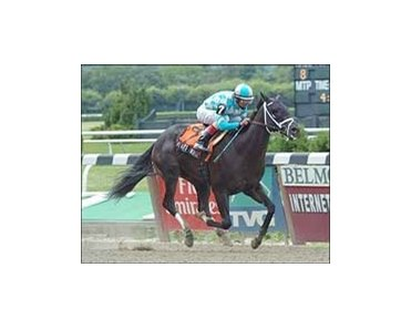Tremont winner Ready's Image faces 8 in Saratoga's Sanford Stakes.